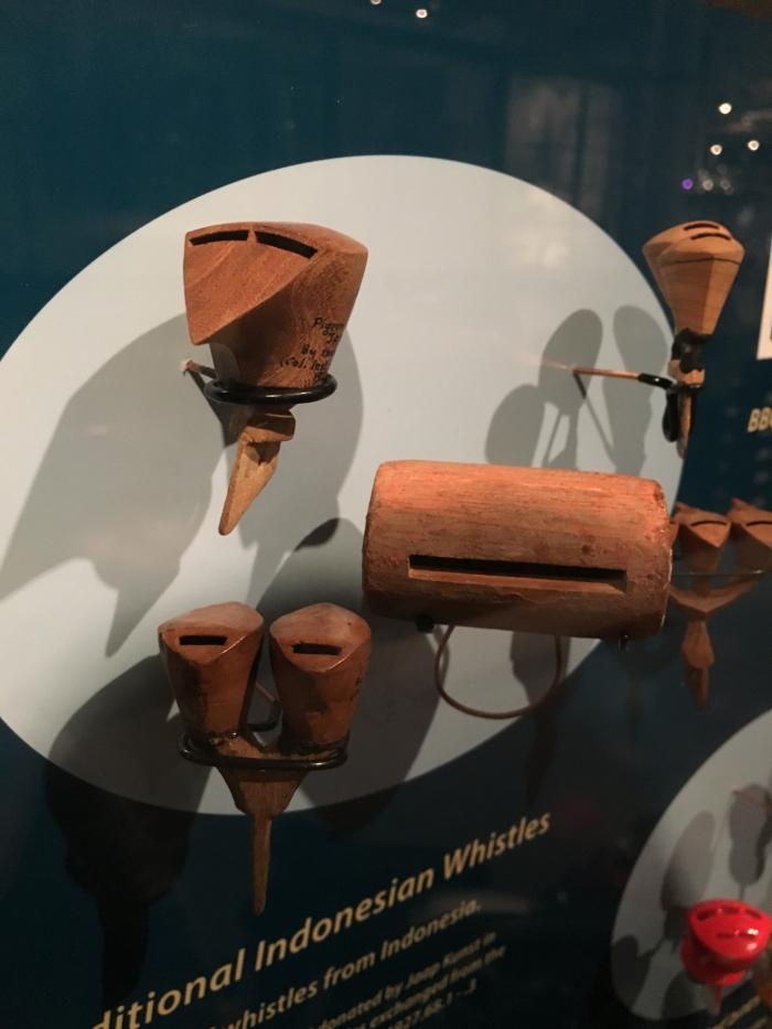 Pigeon whistles from the Pitt Rivers Museum collection