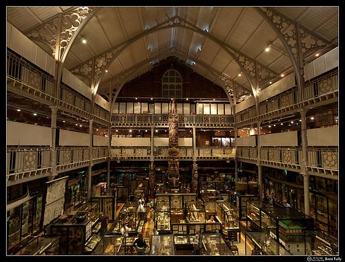 Pitt Rivers Museum interior